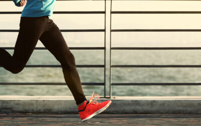 Does exercise contribute to the immune system?